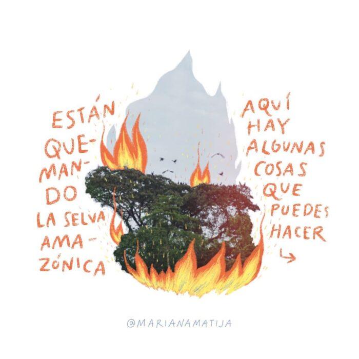 Están quemando la selva Amazónica